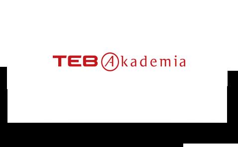 TEB Akademia